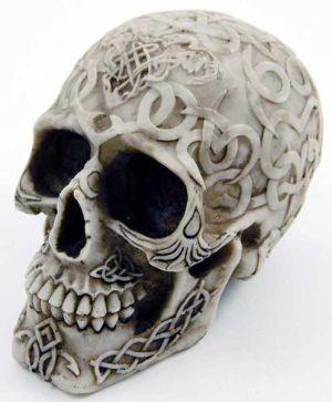 Skull 16x10.5x11.5cm