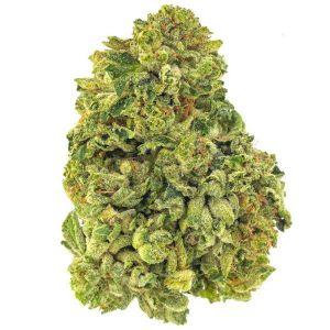 Super Lemon Haze CBD Buds 1gm